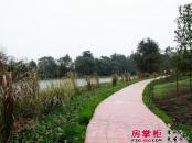 佳年华新生活实景图江安河2013.5.9