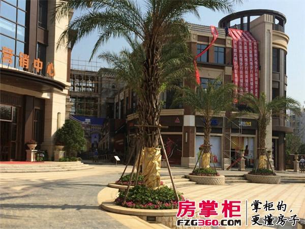 兴荣郡实景图