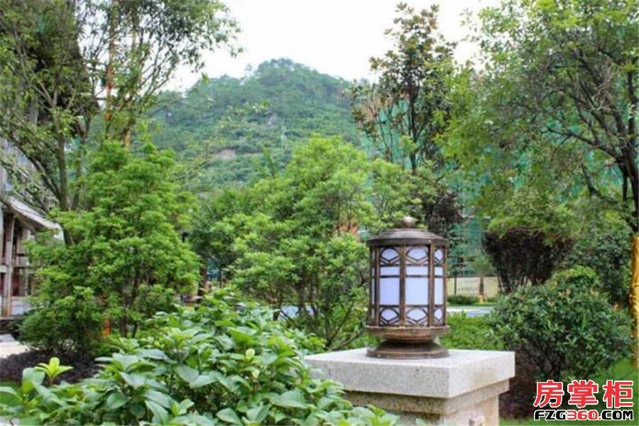 福达万鹂江山实景图
