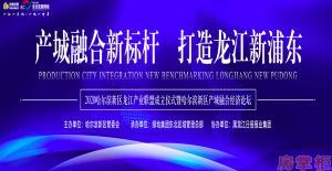 2020哈尔滨新区龙江产业联盟成立仪式暨哈尔滨新区产城融合经济论坛