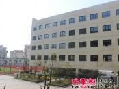 禹洲天境实景图翡翠学校(2013.8.1)