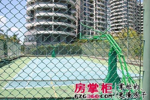 半岛花园篮球场