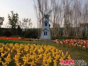 金科城实景图园林(2014-4-29)