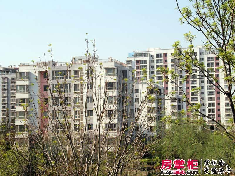 济南鲁能领秀城实景图样板间周边(2014-05-12)