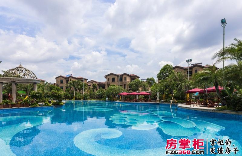 洛阳碧桂园泳池
