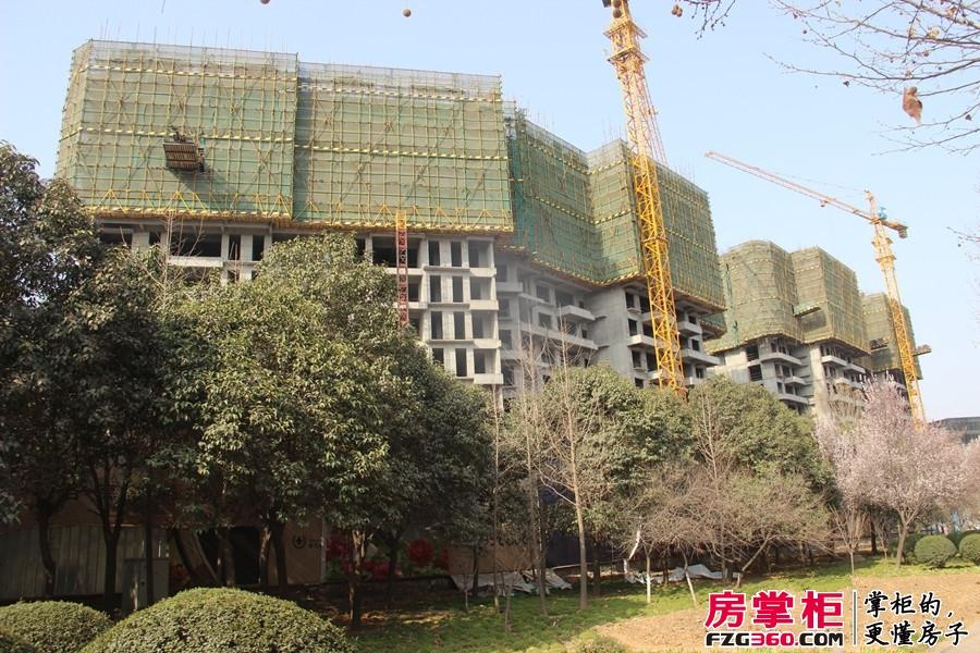 大曌国际广场二期工程进度(2015-3-12)