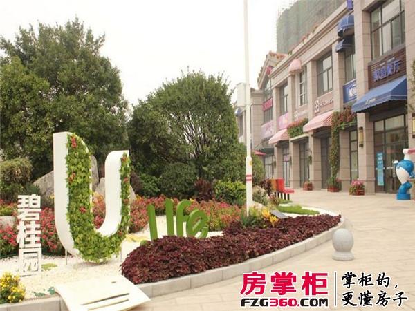 洛阳碧桂园实景图