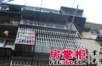 上海路金鑫小区