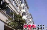 梅岭太平镇新天家园