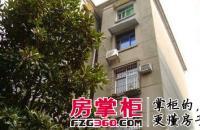 北京路中小企业局