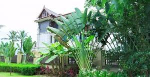 雨林源筑全新推出阔景洋房 均价9000元/m²