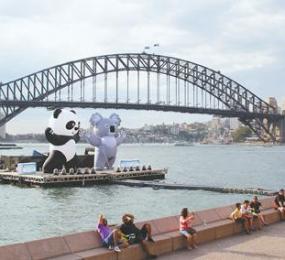 2017旅游年掀起中澳旅游新热潮 深度游定制游更受宠